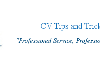 profile resume service ri etusivu resume writing services monster careerperfect best professional inside best resume services